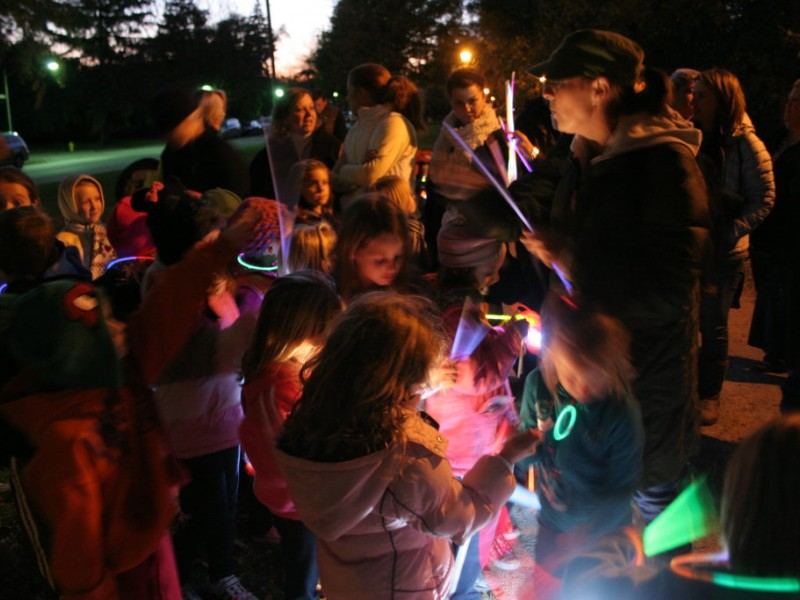 Little Glowing Lanterns Lead The Way For Hundreds Of