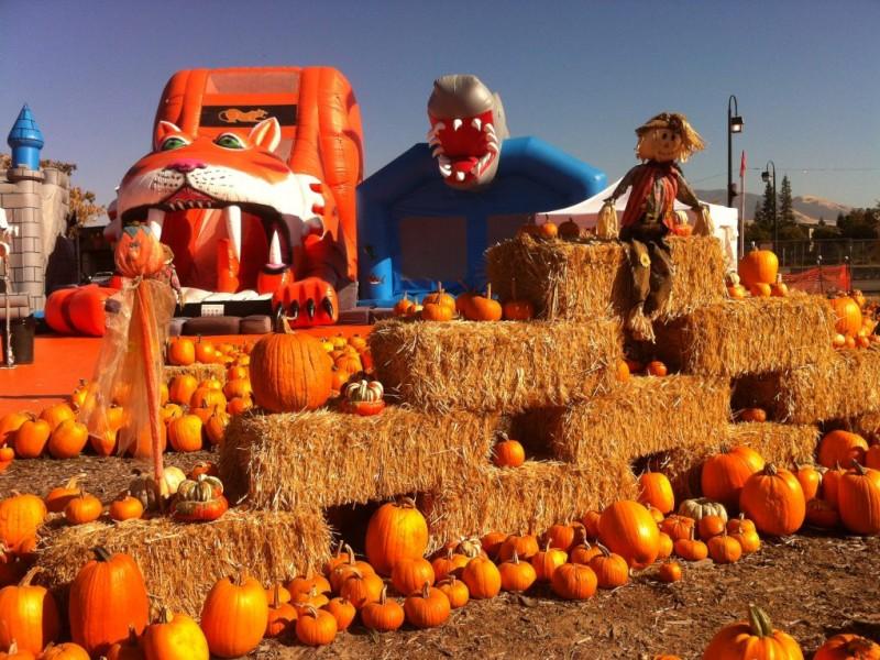 pumpkin hill fire jacksonville fl