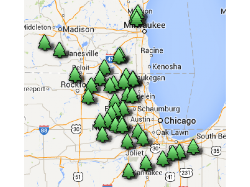 Find Christmas Tree Farms in Chicago Suburbs, Wisconsin, Indiana ...