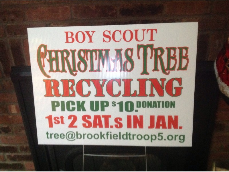 Brookfield Boy Scouts Christmas Tree Pick Up - Brookfield, CT Patch