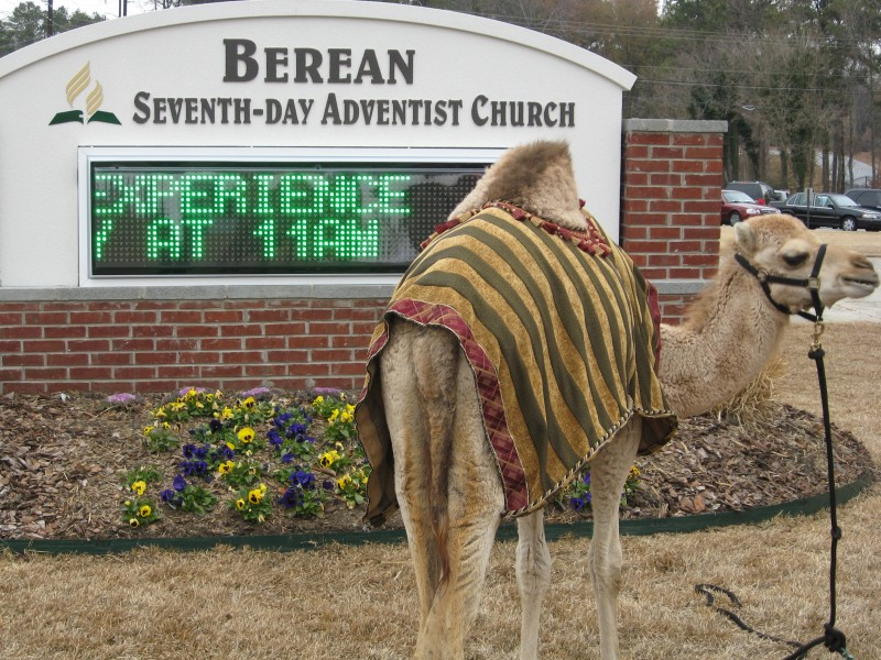 Berean Seventh Day Adventists celebrate Christmas, stop traffic ...