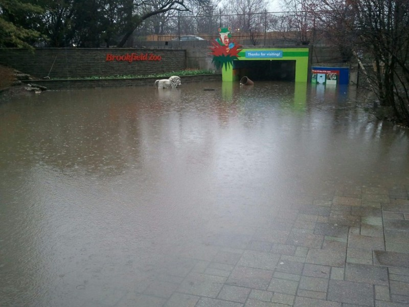 Brookfield Zoo Floods, Closes for Only Third Time in ...
