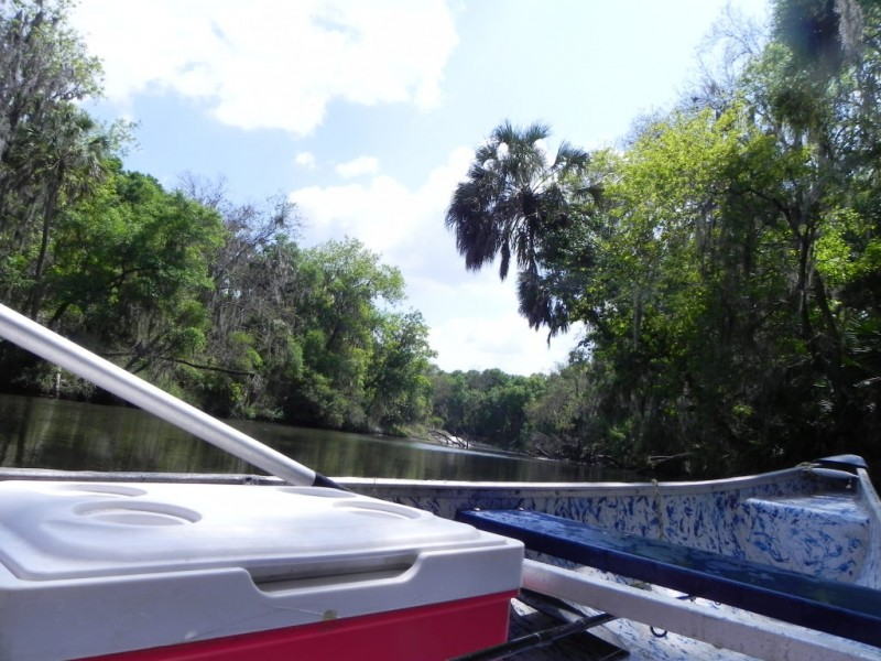 Upper Manatee River Just One Of Tampa Bay S Wild Places