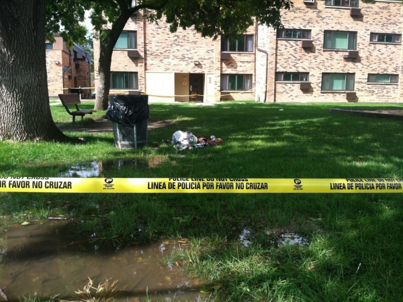 update  palatine police deal with frequent rand grove