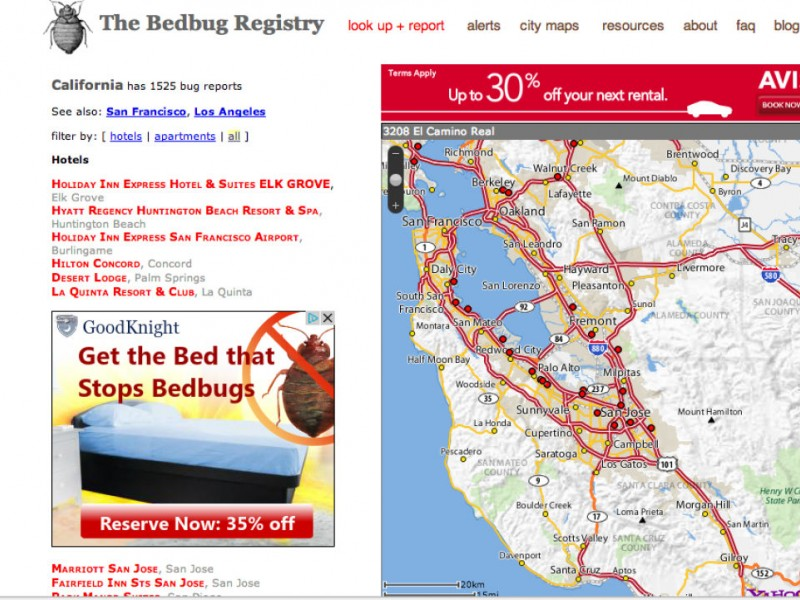 Bed Bugs Discovered In Unlikely Place Milpitas CA Patch - Map of bed bug infestation in us