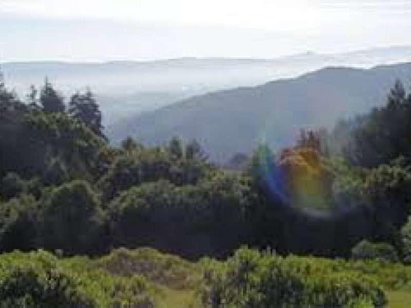 490 Acres Added To Mount Madonna County Park Gilroy Ca