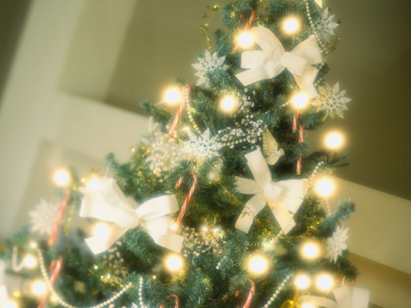 best places to buy a christmas tree - Buy A Christmas Tree