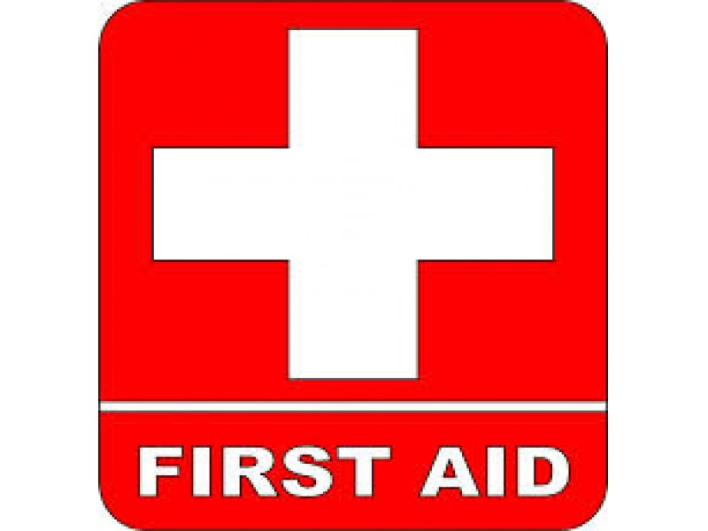 Red Cross Adult Amp Pediatric First Aid Cpr Aed Brookfield